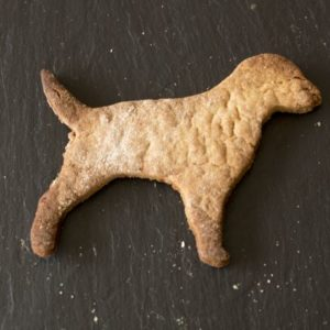 Honey and Oat Dog Biscuit Treats
